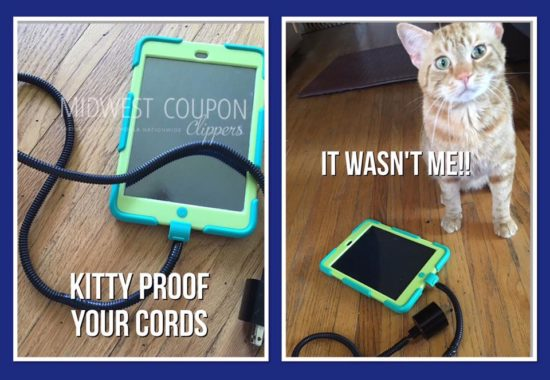 kitty proof your cords