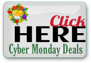 cyber-monday-button-2