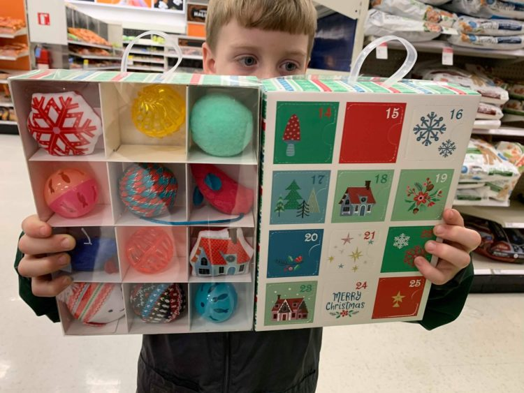 Target Cat Advent Toy Calendar Only 9 99 Free Store Pick Up